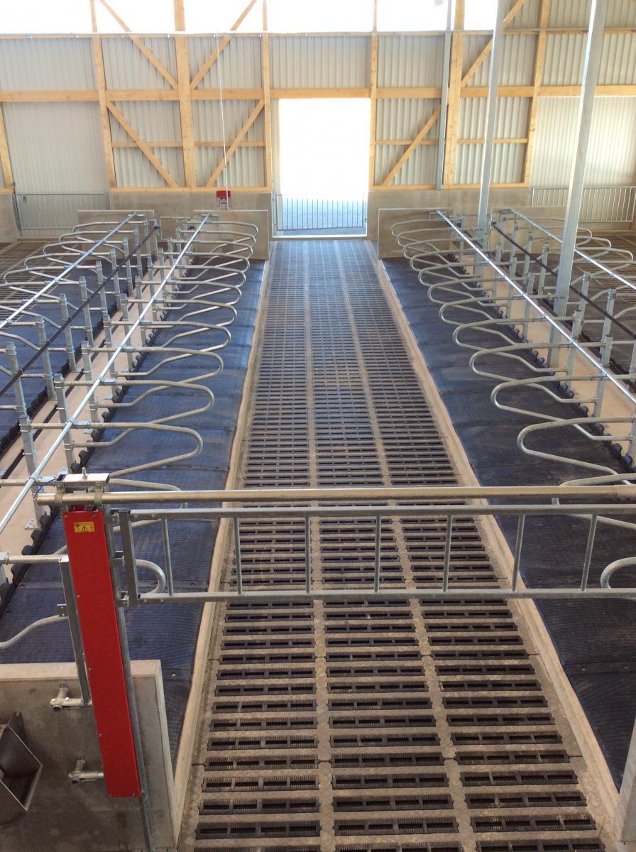 Eco Floor Spanwright